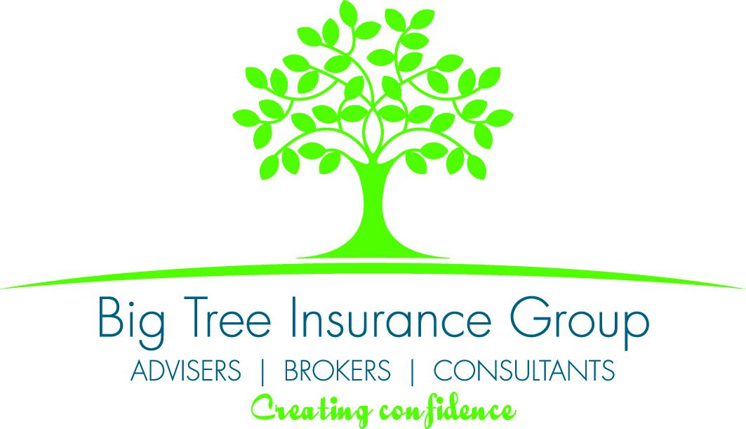 big-tree-insurance-group